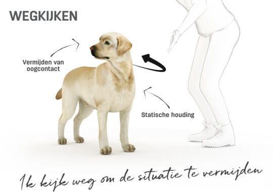 Lichaamstaal hond - wegkijken