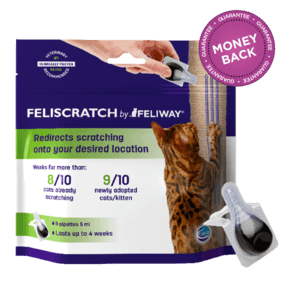 F.F.A.Q (FELIWAY Frequently Asked
