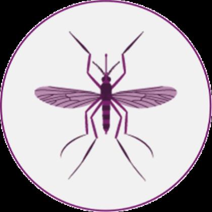 Protégez votre chien des piqûres de moustiques avec Vectra 3D
