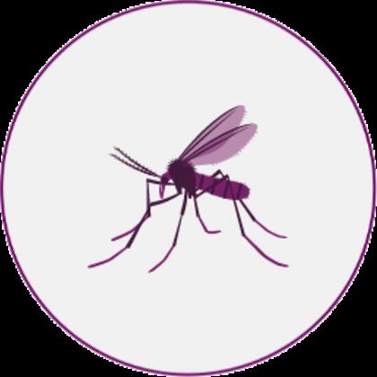 Sandmücken-Piktogramm