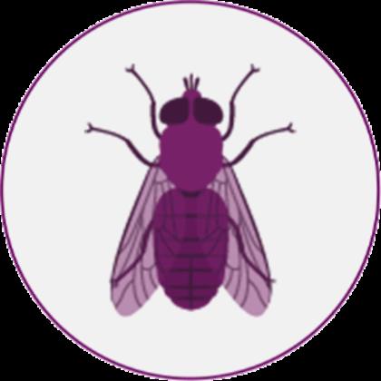 Stechfliegen-Piktogramm