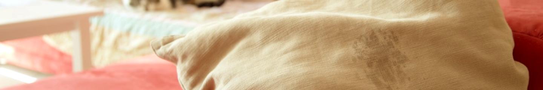 ¿Cómo evitar que los gatos marquen con orina?