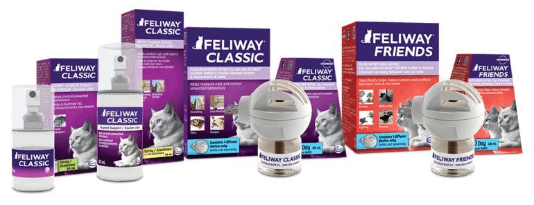 how to use feliway spray for aggression