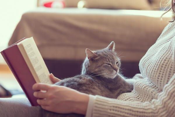 Waarom je kat graag op je ligt