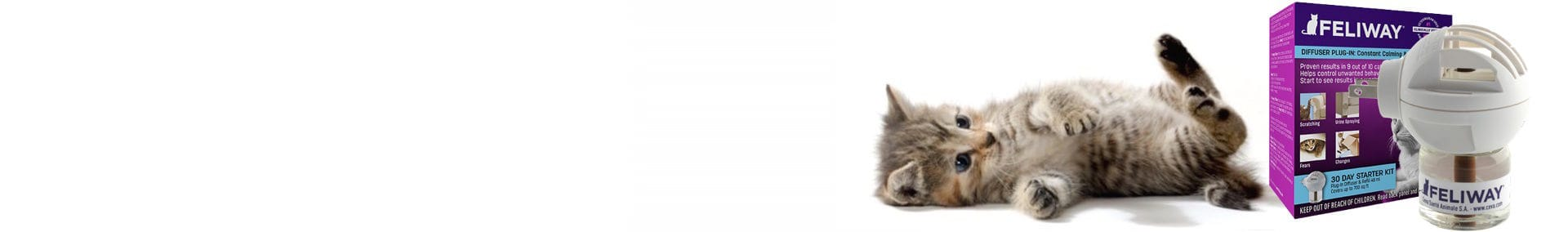 Cats and Kittens love Feliway Diffuser's