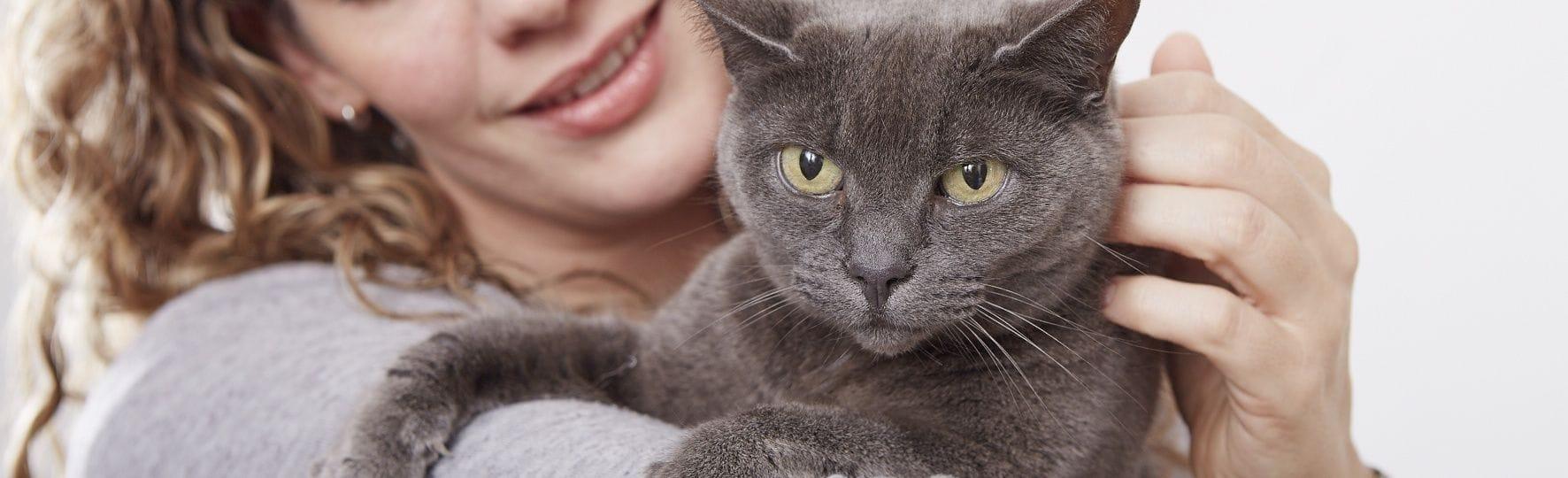 Feliway - tajemství spokojených koček