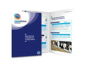 Diptico-Booklet-Reproductive-Heifers_product