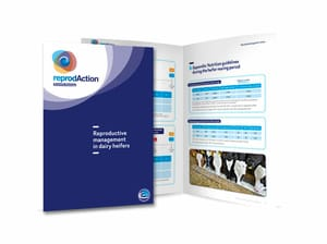 Díptico Booklet Reproductive Heifers