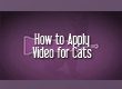 How to Apply Vectra® for Cats and Kittens